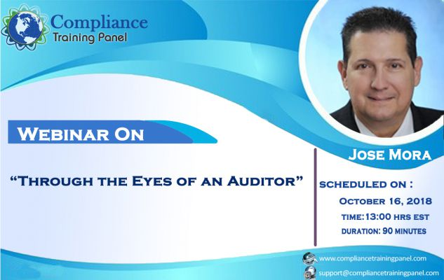Through the Eyes of an Auditor